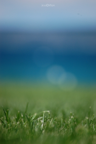 earth_water_wind