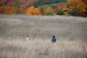 Boy & Dog Meet in Field