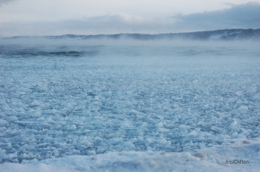Blue Fog Ice