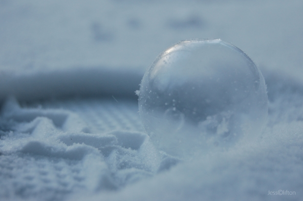 Frozen Bubble in Snow Footprint