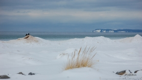 Winter Beach Lake Michigan