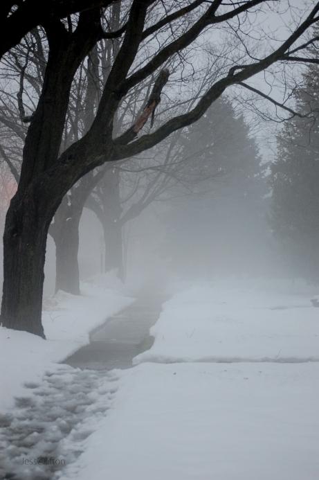 Fog Snow Sidewalk