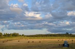 Blue Tractor Field
